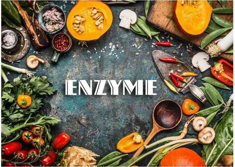 Enzymes và vai trò trong việc hỗ trợ điều trị tiêu hóa