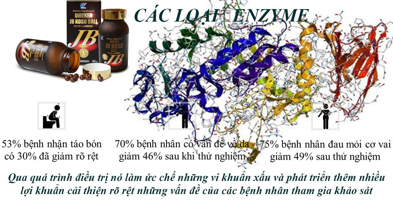 Các loại Enzyme trong Kosoball